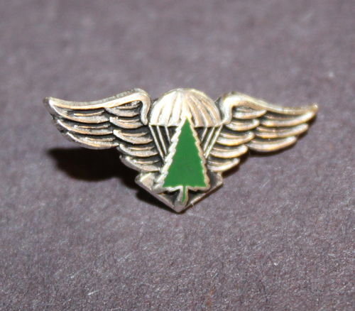 Smokejumpers rookie pin